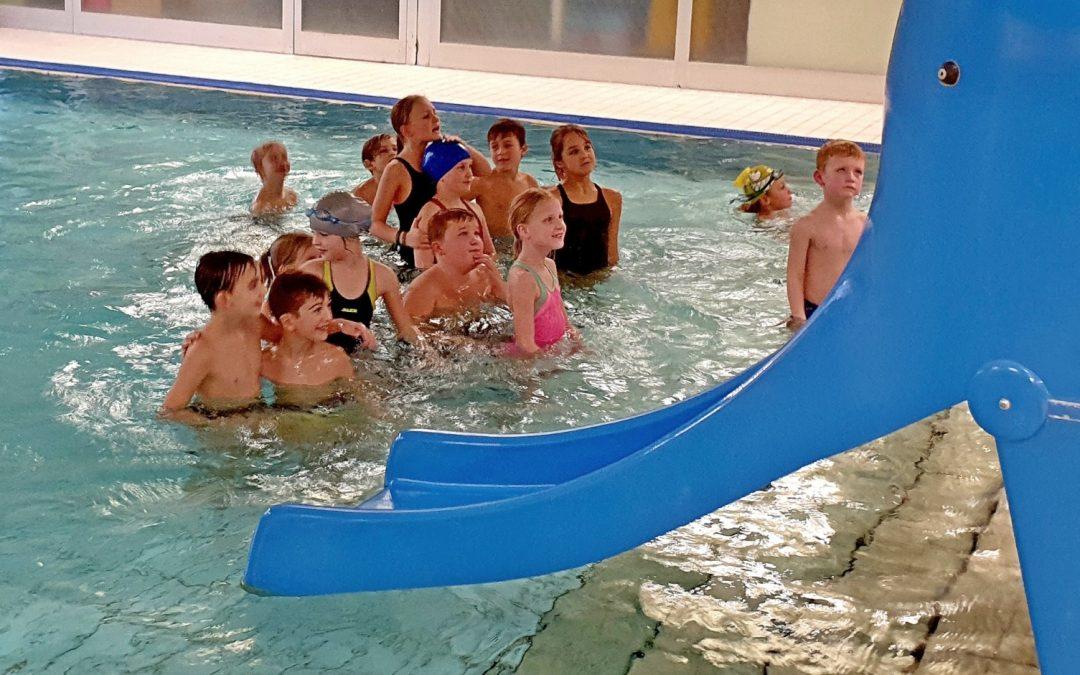 Neue Schwimmkurse im Hallenbad